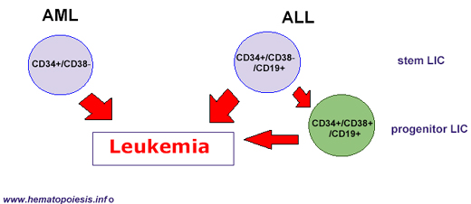case study childhood leukemia